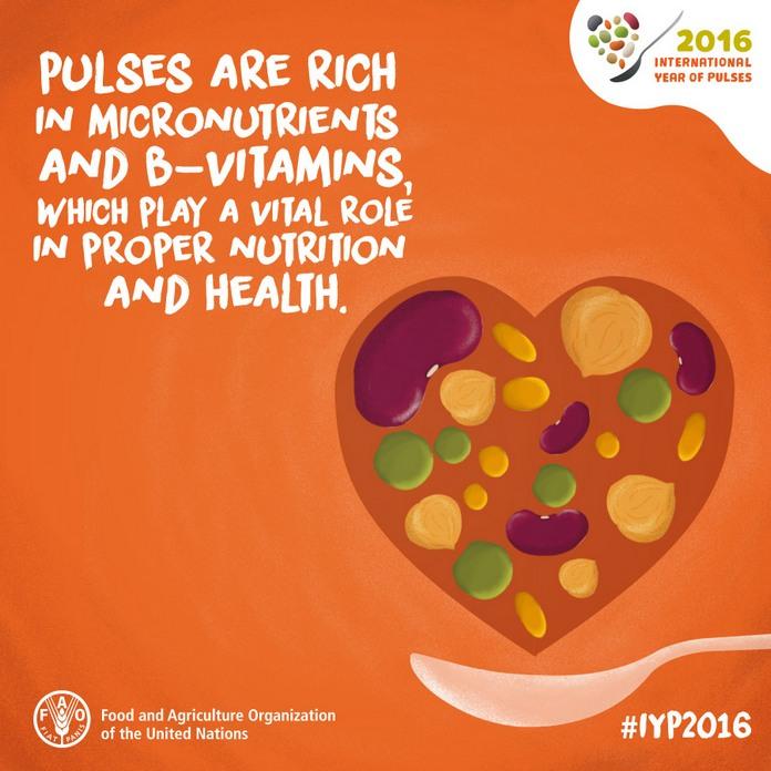 """""""I legumi sono ricchi in micronutrienti e vitamine del gruppo B i quali svolgono un ruolo fondamentale per una corretta alimentazione e per la salute."""""""